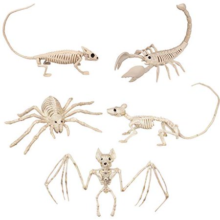 SCS Direct Halloween Animal Skeleton Value Pack Decorations (Set of 5) - Weatherproof Indoor Outdoor Realistic Animal Bones Body Prop
