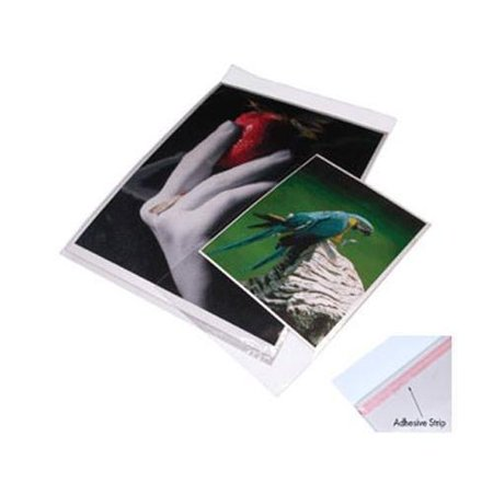 Print File 8x10 Re-sealable Photo / Art Bags (100 Pack)