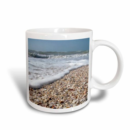 3dRose Seashells, Sanibel Island, Gulf Coast, Florida - US10 DFR0166 - David R. Frazier, Ceramic Mug, 15-ounce