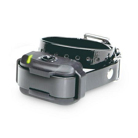 Dogtra E-Fence EF-3500 RX Extra Receiver-Black