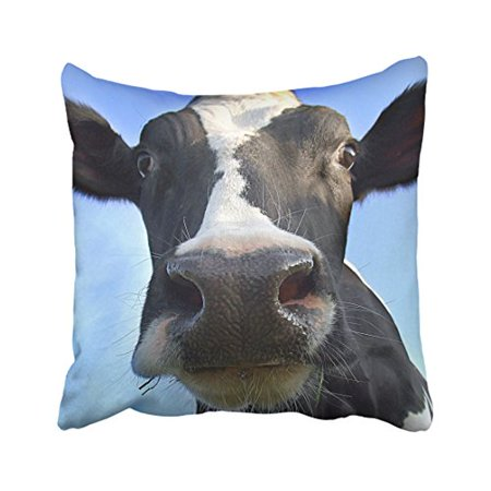RYLABLUE Decorative Happy Cow Decor Soft Throw Pillow Cover Case Size 20x20 inches Two Side - image 1 de 1