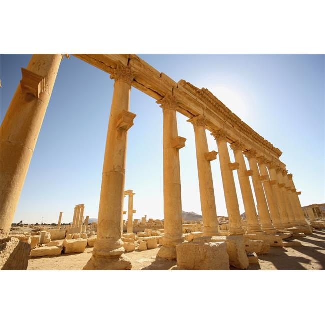 Posterazzi DPI1892499LARGE Ancient Ruins of Palmyra Poster Print, 38 x 24 - Large - image 1 de 1