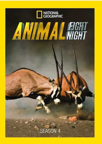 National Geographic: Animal Fight Night Season 4 (DVD) by National Geographic