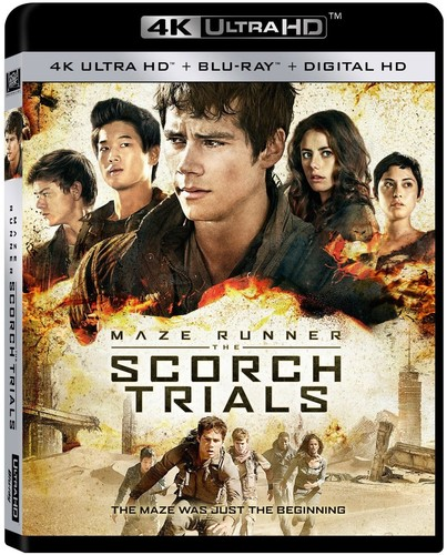 The Maze Runner: The Scorch Trials (4K Ultra HD + Blu-ray + Digital HD)