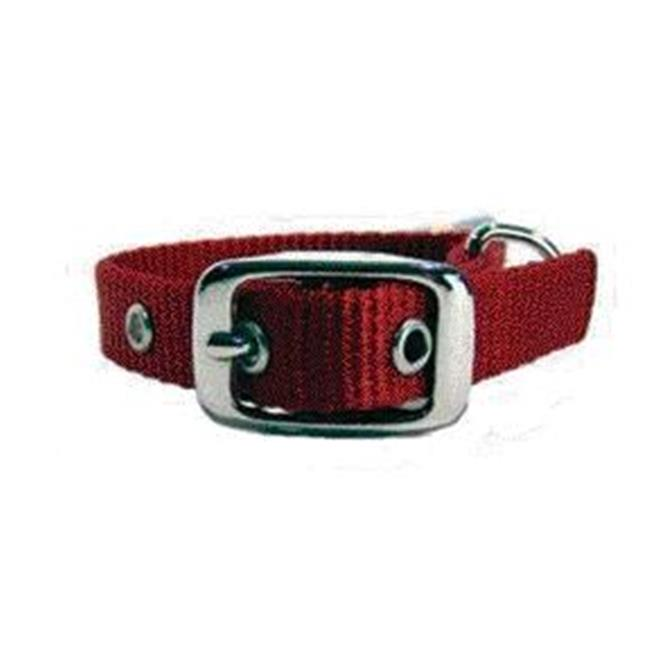 Single Thick Nylon Dog Collar- Red .63 X 12 - ST 12RD