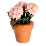 Dollhouse Hydrangea In Pot Pink