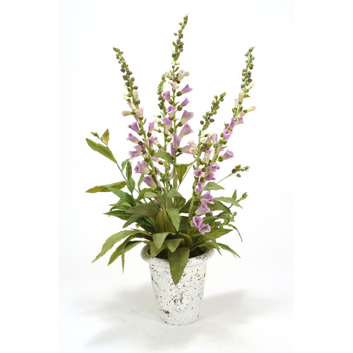 Distinctive Designs Lavender Foxglove in Embossed Pot