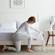 Lucid Zippered Mattress Encasement Bed Bug and Waterproof Protector