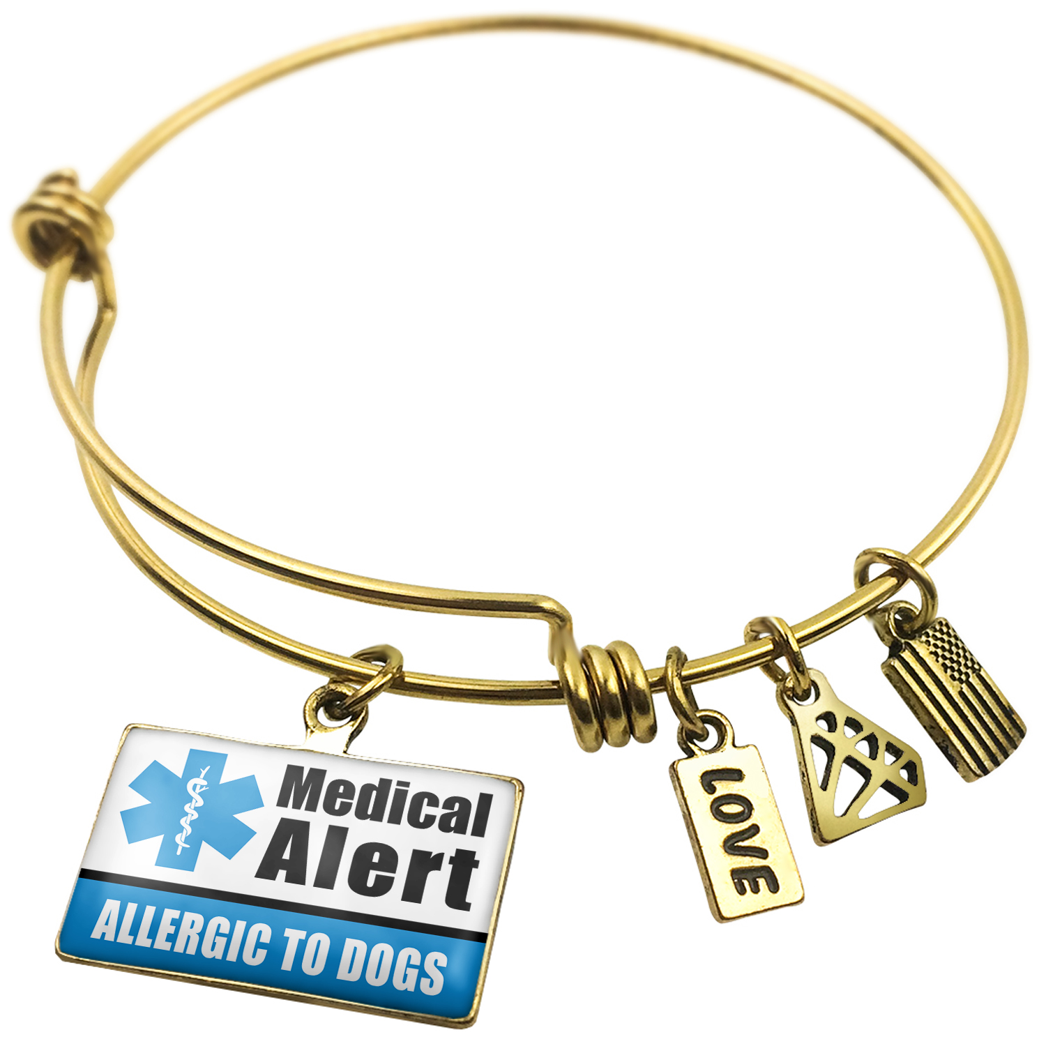 Expandable Wire Bangle Bracelet Medical Alert Blue Allergic to Dogs - NEONBLOND