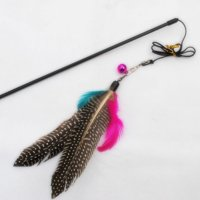 Pet Cat Interactive Exercise Toy for Solving Boredom Tease Cat Wand Toy with Colorful Feather Head