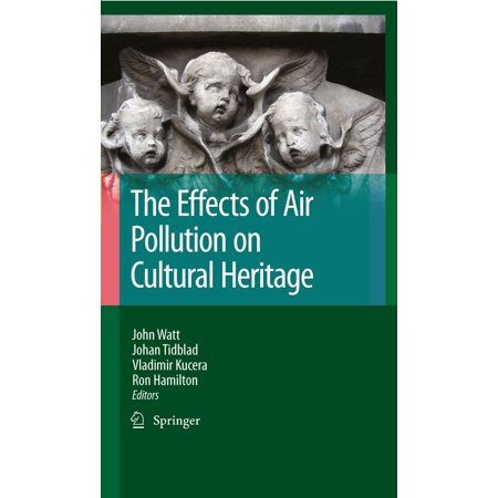 The Effects of Air Pollution on Cultural Heritage - (Health Effects Of Transport Related Air Pollution)