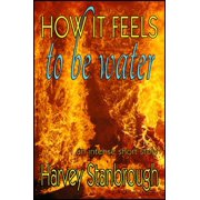 How It Feels to Be Water - eBook