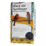 JRK Seed & Turf Supply B200020 20 lbs. Black Oil Sunflower Bird Food
