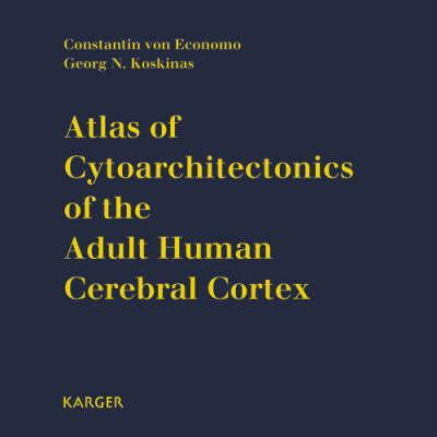 Atlas of Cytoarchitectonics of the Adult Human Cerebral Cortex