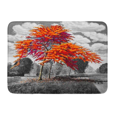 KDAGR Oil Painting Landscape Red Orange Color of Peacock Flowers in The Morning and Trees Sky Cloud Gray Hand Doormat Floor Rug Bath Mat 23.6x15.7 inch