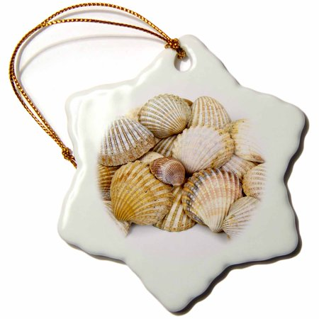 3dRose Sea Shells by the Sea Shore - Summer - Beach Theme - Snowflake Ornament, 3-inch