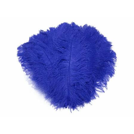 1 2 Lb   18 24  Royal Blue Large Wing Plumes Wholesale Feathers  Bulk  Swa