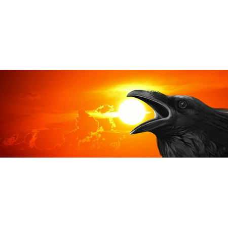 Crow Bird Art (Framed Art for Your Wall Crow Sky Raven Lawn Bird Night Glow Sunset 10x13 Frame )