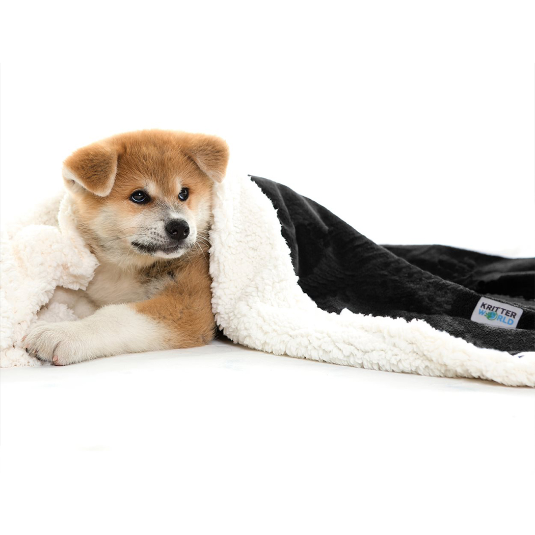 """KritterWorld Pet Dog Cat Puppy Kitten Microplush Sherpa Snuggle Blanket for Couch, Car, Trunk, Cage, Kennel, Dog House, 45""""x30"""", 60""""x30"""""""