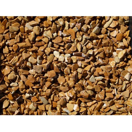 Exotic Pebbles & Aggregates Wood Bean Pebbles, 5 lb ()