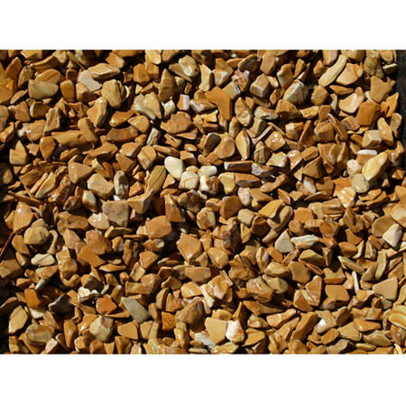 Exotic Pebbles & Aggregates Wood Bean Pebbles, 5 lb