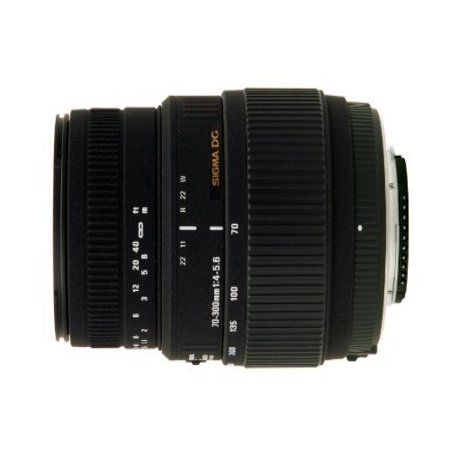 Sigma 70-300mm f/4-5.6 DG Macro Motorized Telephoto Zoom Lens for Nikon Digital SLR