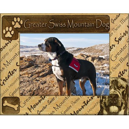 Giftworks Plus DBA0092 Greater Swiss Mountain Dog, Alder Wood Frame, 5 x 7 In