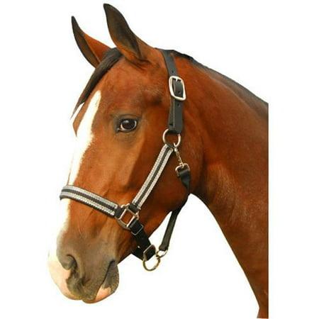 Intrepid 126102 Breakaway Halter Leather Crown Padded for Horse, Black & Silver - Cob - image 1 de 1