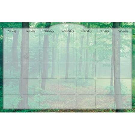 Biggies DC-FTM-48 Dry Erase Stickie Monthly Calendar - Forest Mist ()