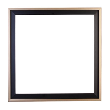 Floater Frame Picture Frame - Floater Frame 18 x 18