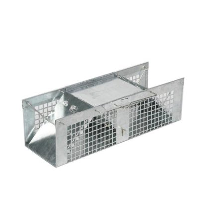 Humane Rodent / Animal Live Trap Catch Without (A List Of Animals That Live In Australia)