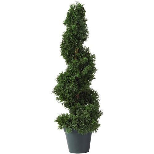 2' Cedar Spiral Silk Tree