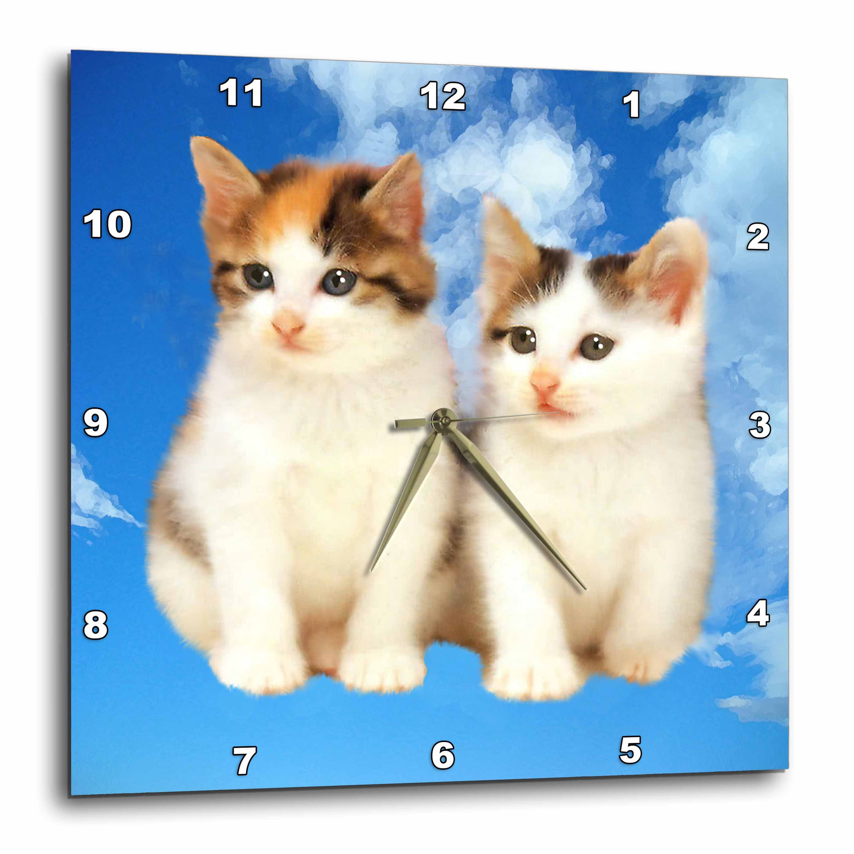 3dRose Two kittens, Wall Clock, 10 by 10-inch