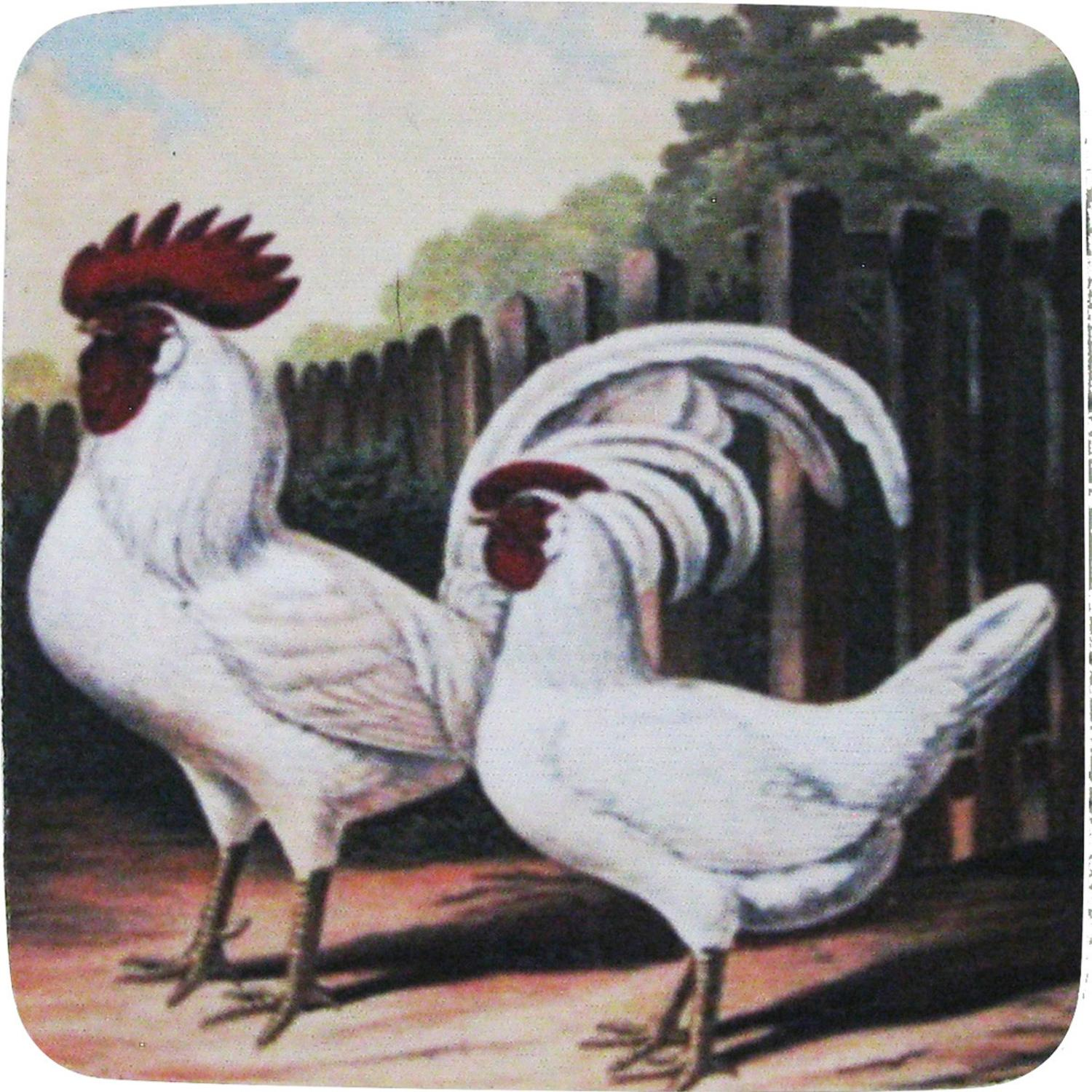 Pack of 8 Absorbent Rural Farm Rooster and Hen Print Cocktail Drink Coasters 4""