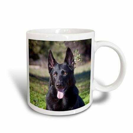 3dRose Portrait of a German Shepherd dog - NA02 ZMU0133 - Zandria Muench Beraldo - Ceramic Mug, 15-ounce