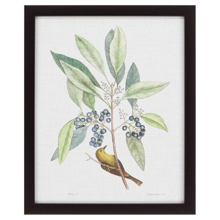 Paragon Wall Decor - Paragon Decor Studies in Nature IV Framed Wall Art