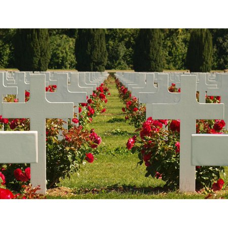 Canvas Print Cemetery Douaumont Ossuary Graves France Headstone Stretched Canvas 10 x 14 ()