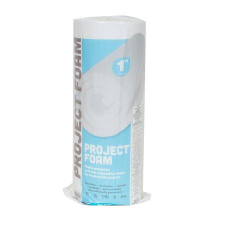 Fairfield Project Foam Multi-Purpose Foam, 24