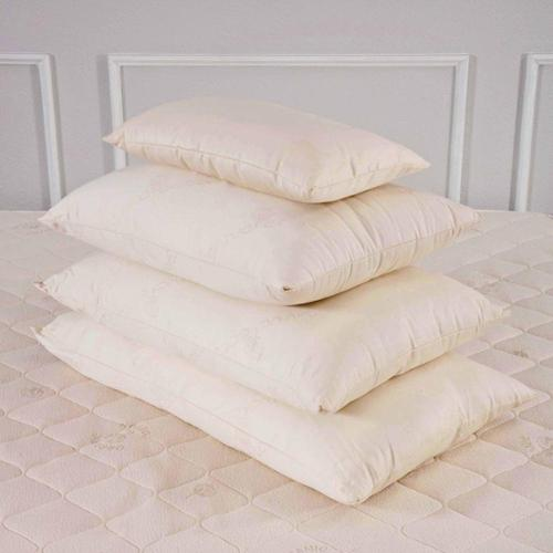 All Organic 300 Thread Count Cotton Pillow Standard Medium