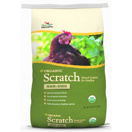 Organic Feed (Manna Pro Poultry Organic Scratch Chicken Feed, 30 lbs. )