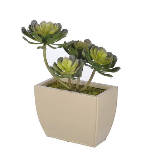 House of Silk Flowers Inc. Artificial Aeonium Succulent Desk Top Plant in Decorative Vase