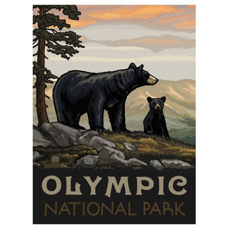 Olympic National Park Pictures (Olympic National Park Washington Black Bear Family Travel Art Print Poster by Paul A. Lanquist (9