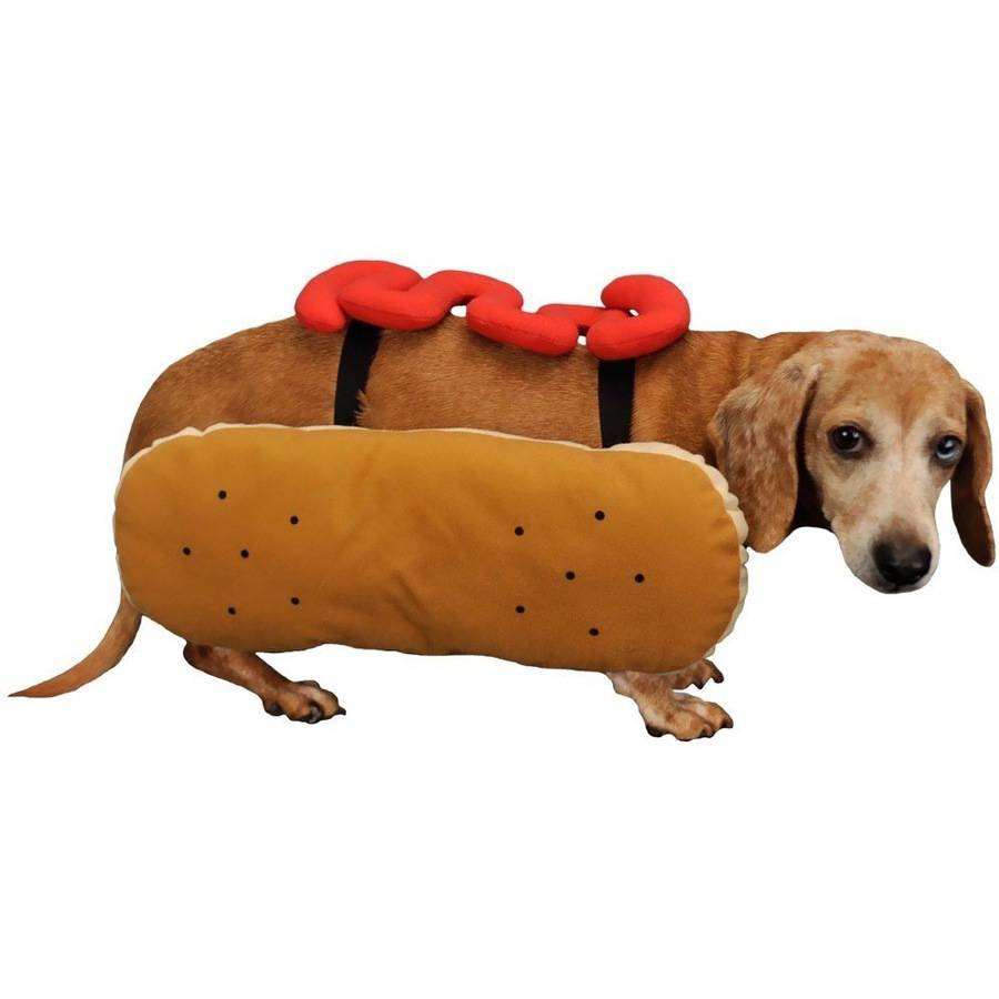 Otis and Claude Fetching Fashion Hot Diggity Dog Costume Ketchup, S