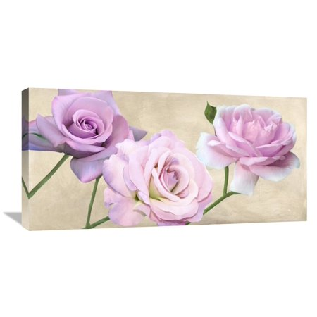 Global Gallery Serena Biffi Rose Classiche Canvas Wall Art