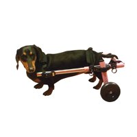 Dog Wheelchair For Small Dogs 8-25 lbs Pink - By Walkin' Wheels