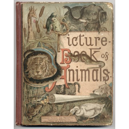Example Of 19Th Century Childrens Book Colour Cover Of Picture Book Of Animals By Rev CA Johns Published By The Society For Promoting Christian Knowledge London 1886 Canvas Art - Ken Welsh  Design Pic
