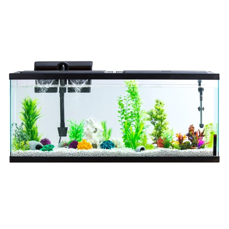aqua culture 55-gallon aquarium starter kit with led - walmart.com