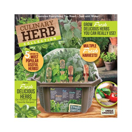 Image of Unique Gardener - Culinary Herb Collection - Indoor Micro-Gardening Kit