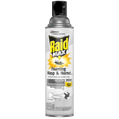 Raid Max Foaming Wasp & Hornet Killer, 13 oz
