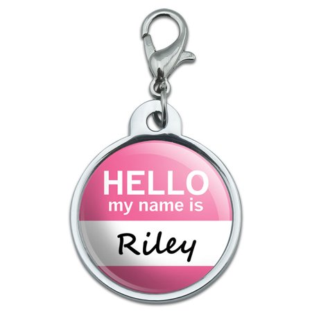 Pet Dog Cat Tag (Riley Hello My Name Is Small Metal ID Pet Dog Tag )
